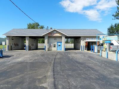 Three Oaks MI Commercial For Sale: $239,900