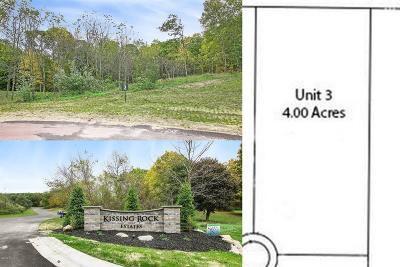 Clinton County, Gratiot County, Isabella County, Kent County, Mecosta County, Montcalm County, Muskegon County, Newaygo County, Oceana County, Ottawa County, Ionia County, Ingham County, Eaton County, Barry County, Allegan County Residential Lots & Land For Sale: 2864 Kissing Ridge Court #3