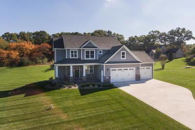 Van Buren County Single Family Home For Sale: 43219 Mitchell Street