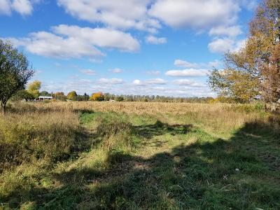 Benzie County, Charlevoix County, Clare County, Emmet County, Grand Traverse County, Kalkaska County, Lake County, Leelanau County, Manistee County, Mason County, Missaukee County, Osceola County, Roscommon County, Wexford County Residential Lots & Land For Sale: 4606 E Fountain Road