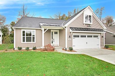 Portage Condo/Townhouse For Sale: 10554 Gracie Lane