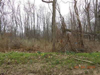 Berrien County, Branch County, Calhoun County, Cass County, Hillsdale County, Jackson County, Kalamazoo County, St. Joseph County, Van Buren County Residential Lots & Land For Sale: 5860 Roosevelt Street