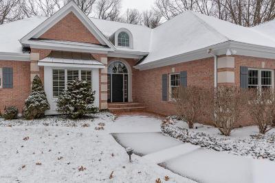Kalamazoo Single Family Home For Sale: 5596 Blue Jay Drive