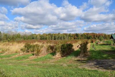 Van Buren County Single Family Home For Sale: 65090 Cr 378