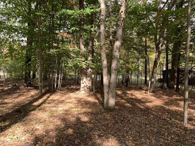 Benzie County, Charlevoix County, Clare County, Emmet County, Grand Traverse County, Kalkaska County, Lake County, Leelanau County, Manistee County, Mason County, Missaukee County, Osceola County, Roscommon County, Wexford County Residential Lots & Land For Sale: 6099 W Dewey Road