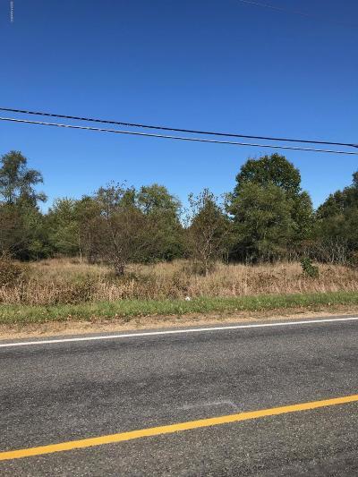Berrien County, Branch County, Calhoun County, Cass County, Jackson County, Hillsdale County, Kalamazoo County, Van Buren County, St. Joseph County Residential Lots & Land For Sale: Coloma
