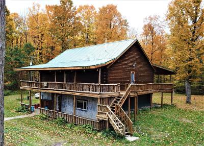 Evart MI Single Family Home For Sale: $219,900
