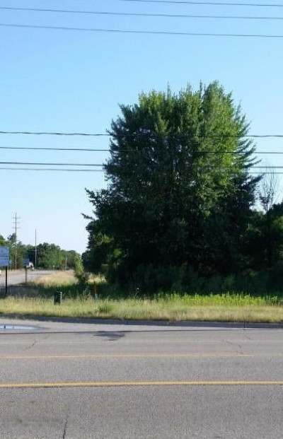 Muskegon County Residential Lots & Land For Sale: 2820 E Apple Avenue
