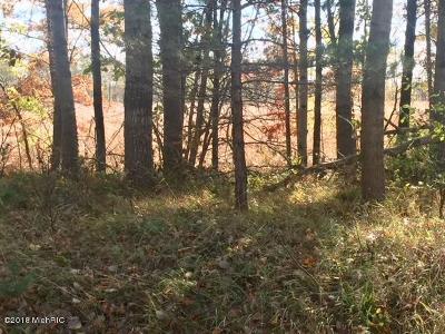 Montcalm County Residential Lots & Land For Sale: Par A Howard City - Edmore Rd