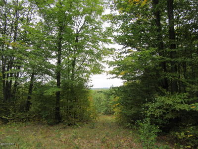 Missaukee County Residential Lots & Land For Sale: 00 W Phelps Road