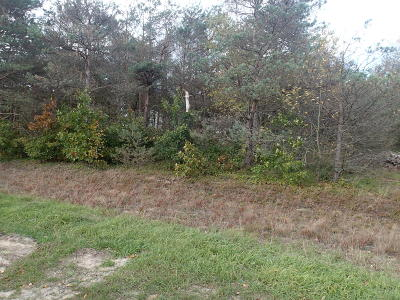Muskegon Residential Lots & Land For Sale: 2986 Danglwood Court