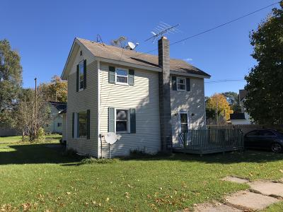 Howard City Single Family Home For Sale: 533 Emory Street
