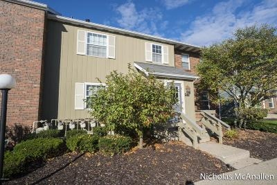 Comstock Park Condo/Townhouse For Sale: 4577 Tabor Road NW #APT B