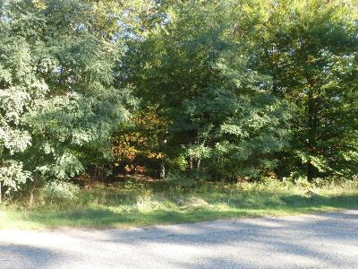 Muskegon Residential Lots & Land For Sale: 1030 Willshire Drive