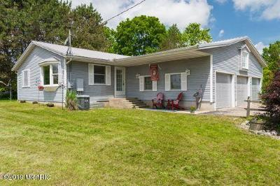 Belding Single Family Home For Sale: 6906 Palmer Road
