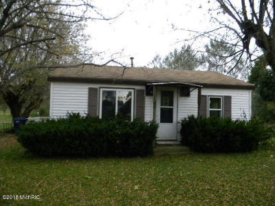 Newaygo County Single Family Home For Sale: 115 E Adams Road