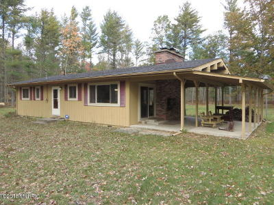 Newaygo County Single Family Home For Sale: 10502 N Walnut Avenue