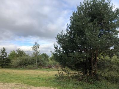 Lowell Residential Lots & Land For Sale: 10627 Kissing Ridge Dr.