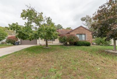 Kalamazoo County Single Family Home For Sale: 1310 Sprucebrook Drive