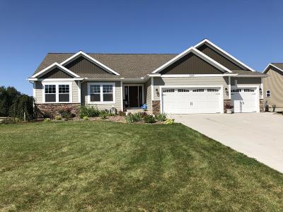 Muskegon County Single Family Home For Sale: 3148 Pinewood Lane