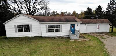 Paw Paw Single Family Home For Sale: 36225 Cr 358