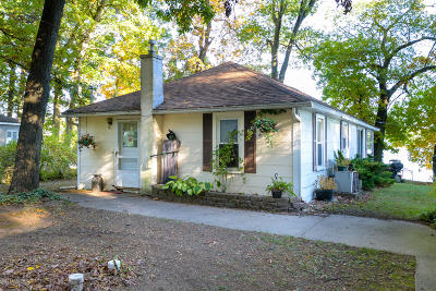 Kalamazoo County Single Family Home For Sale: 10231 S 28th Street