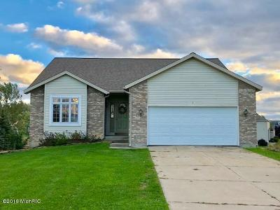 Hudsonville Single Family Home For Sale: 2752 Quincy Street