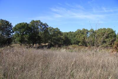 Calhoun County Residential Lots & Land For Sale: V-L B Drive N