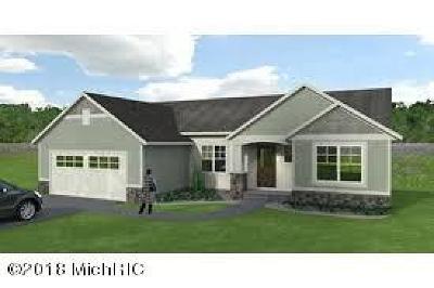 Single Family Home For Sale: 9059 Wabasis Shores Drive NE