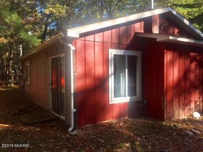 Howard City Single Family Home For Sale: 8636 Ottawa