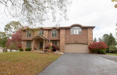 Ingham County Single Family Home For Sale: 1884 Birchwood Drive