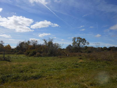 Berrien County Residential Lots & Land For Sale: Us 31