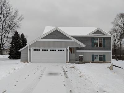 Single Family Home For Sale: 459 Tentree Drive