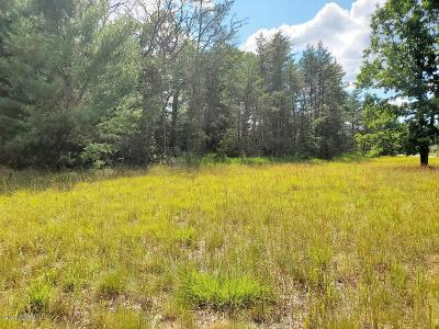 Lake County Residential Lots & Land For Sale: 52nd Street