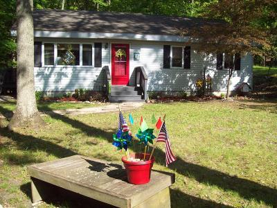 Benzie County Single Family Home For Sale: 4586 Poplar Avenue