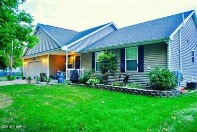Kalamazoo Single Family Home For Sale: 3840 Nichols Road
