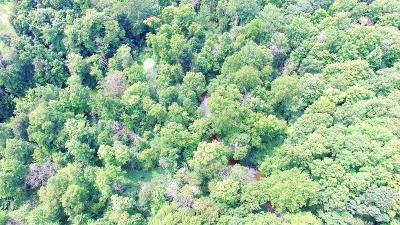 Residential Lots & Land For Sale: 2 M 43 Highway