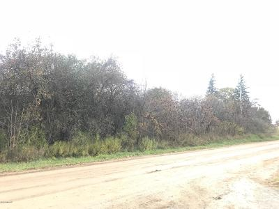 Byron Center Residential Lots & Land For Sale: 1449 16th Avenue