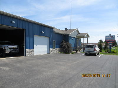 Scottville Commercial For Sale: 978 Us Highway 31