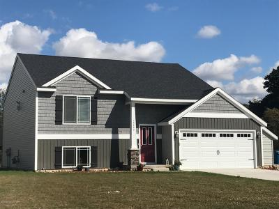 Newaygo Single Family Home For Sale: Lot C Croton Drive