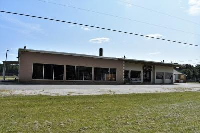 Baldwin Commercial For Sale: 8222 S M-37