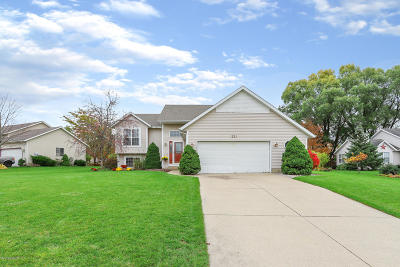 Holland Single Family Home For Sale: 221 Sterling Drive