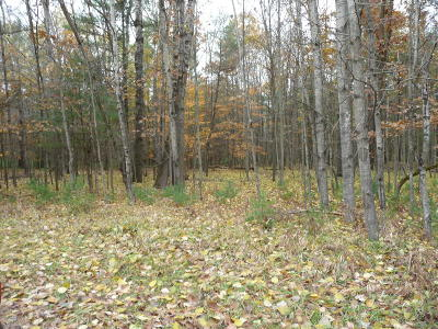 Canadian Lakes Residential Lots & Land For Sale: 6936 Cherry Court