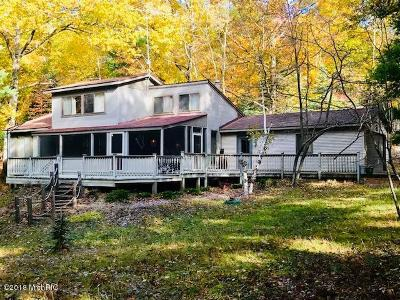 Single Family Home For Sale: 4690 Lakeshore Road
