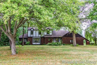 Grand Rapids Single Family Home For Sale: 809 Maynard Avenue NW