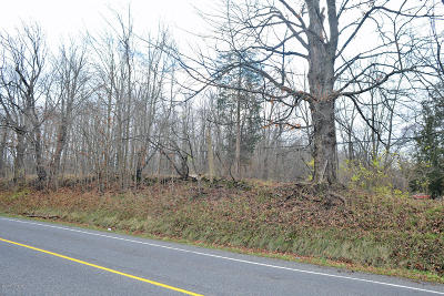 Buchanan Residential Lots & Land For Sale: 2860 Niles Buchanan Road