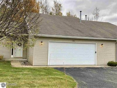 Benzie County, Charlevoix County, Clare County, Emmet County, Grand Traverse County, Kalkaska County, Lake County, Leelanau County, Manistee County, Mason County, Missaukee County, Osceola County, Roscommon County, Wexford County Condo/Townhouse For Sale: 244 Greenview Circle #2