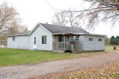 Mecosta Single Family Home For Sale: 177 N Webber Street