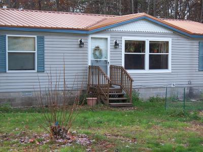 Bitely MI Single Family Home For Sale: $129,900