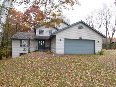 Cedar Springs MI Single Family Home For Sale: $179,900